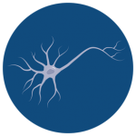 icon_cerebral_cortical_neurons_dark